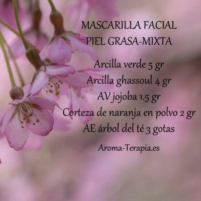 mascarilla-preelaborada-p-grasa-ig-400x400